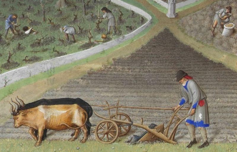 Bauern leben mittelalter Faktencheck: Bauern